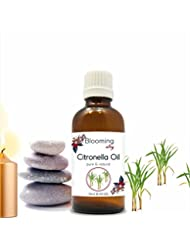 Citronella Oil (Cymbopogon Nardus) Essential Oil 10 ml or 0.33 Fl Oz by Blooming Alley