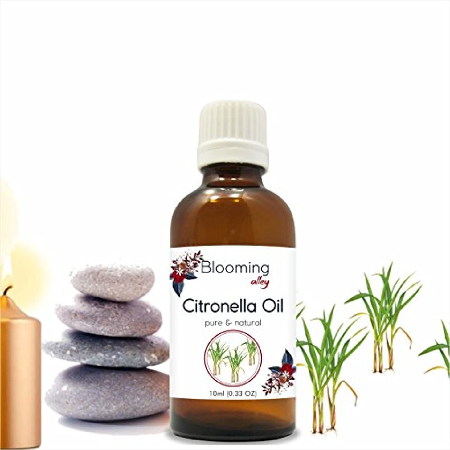 グラス気怠いロープCitronella Oil (Cymbopogon Nardus) Essential Oil 10 ml or 0.33 Fl Oz by Blooming Alley