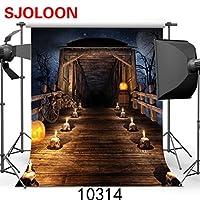 SJOLOON 10x10フィート ハロウィンビニール写真撮影用バックグラウンド 写真 バックドロップ 月夜 スタジオ小物 Prop JLT-10