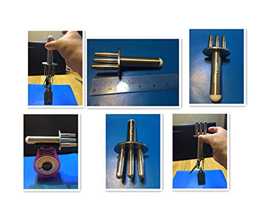 完璧なギネスレバー顔ボディ排酸術マサッジ小さな排酸棒マッサジ棒磁力マッサジ棒Echo & Kern はいさんじゅつ、陰極磁力排酸棒北極磁気マッサジ棒、磁気棒、ツボ押し棒 磁気 マッサージ棒 指圧棒 磁力がコリに直接当たる排酸術 …
