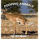 Pooping Animals 2021-2022 Wall Calendar: Hilarious Gag Gift with 18 High Quality Pictures of Domestic and Wild Animals Poopin