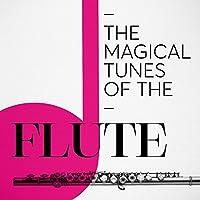 Flute Sonata in E-Flat Major, BWV 1031: II. Siciliano
