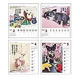 アートプリントジャパン 2020年 チワワ川柳(週めくり)カレンダー vol.008 1000109217 画像