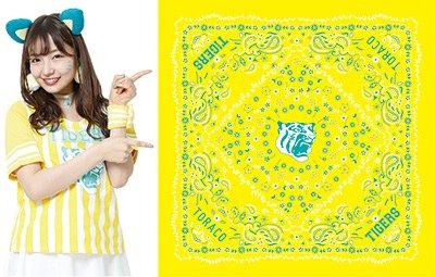 阪神タイガース toraco 限定 非売品 バンダナ AKB48 山本彩 NMB48