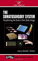 The Somatosensory System: Deciphering the Brain's Own Body Image (Frontiers in Neuroscience)