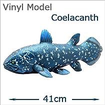 FAVORITE(フェバリット) 古代魚フィギュア ビニールモデル シーラカンス