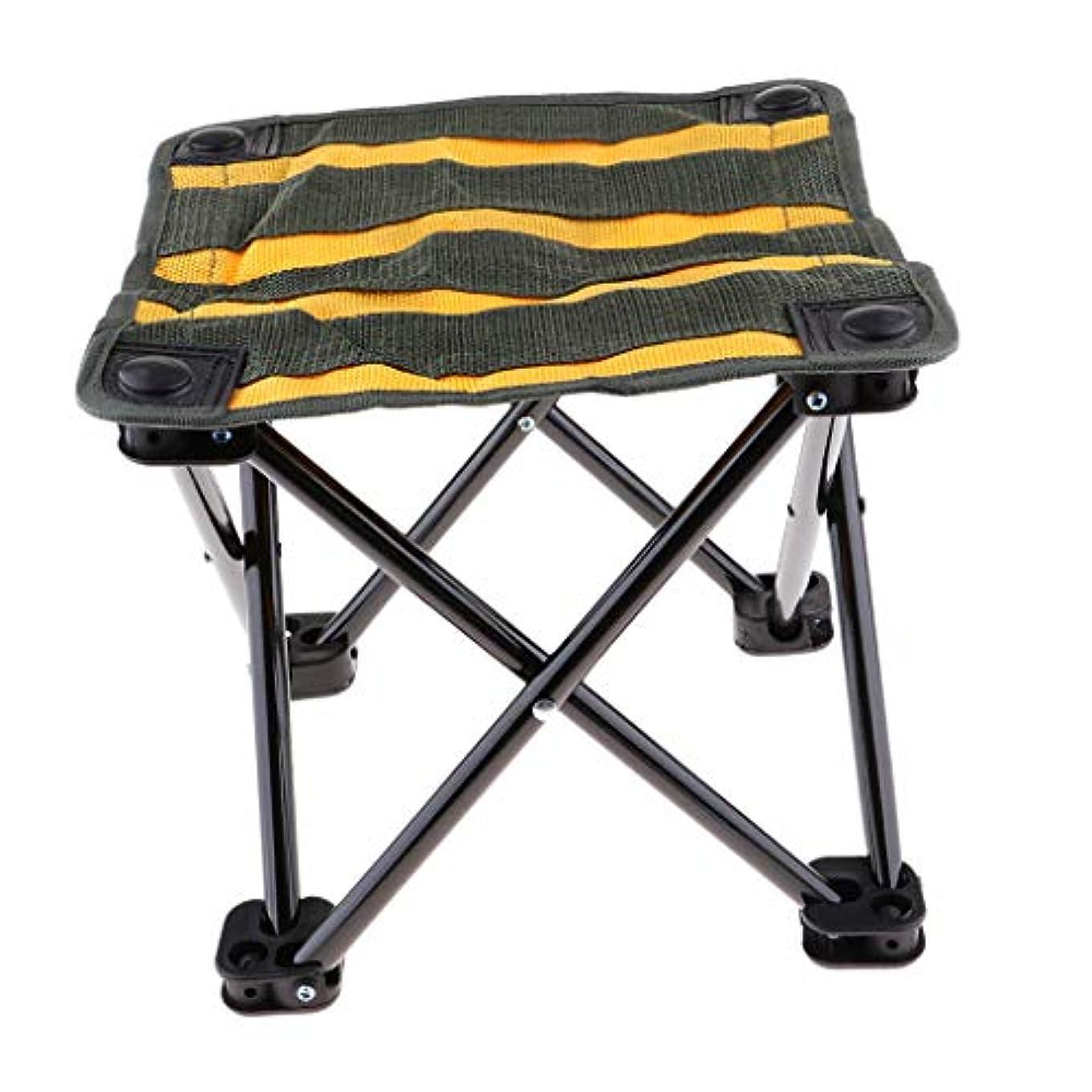 おばあさんカプラーゲージFLAMEER 折り畳み椅子 アウトドアチェア ピクニック キャンプ 釣り 耐荷重 全2サイズ