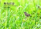 野鳥百景 画像