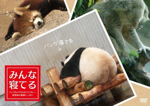 みんな寝てる ―パンダもゾウもカピバラも・・・動物達の寝顔いっぱいー [DVD]