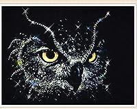Xiyuyuan Diy露フクロウのリビングルームの装飾スティックドリル5Dフルダイヤモンド絵画絵画工芸