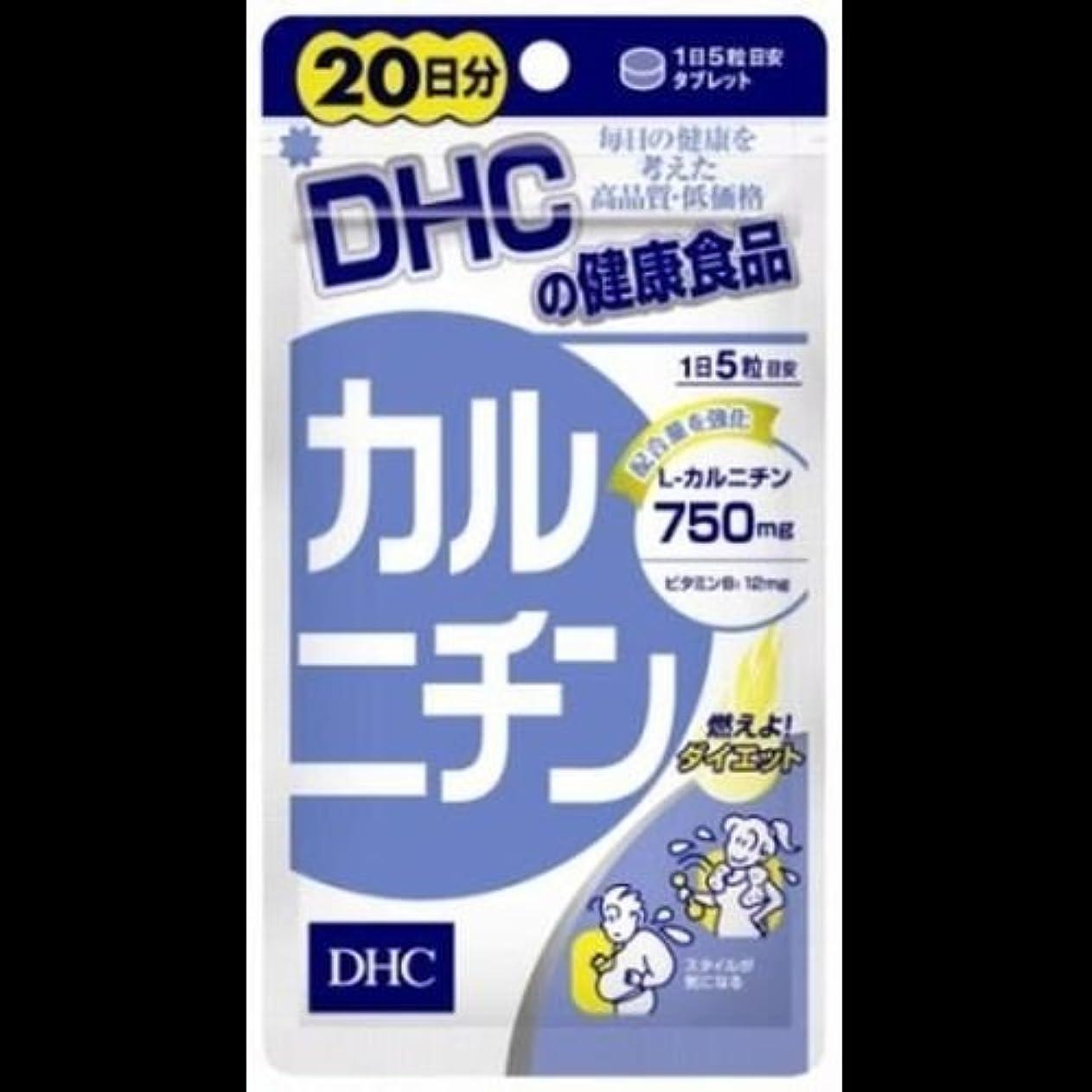 ティッシュ肺炎前部【まとめ買い】DHC DHCカルニチン20日 ×2セット