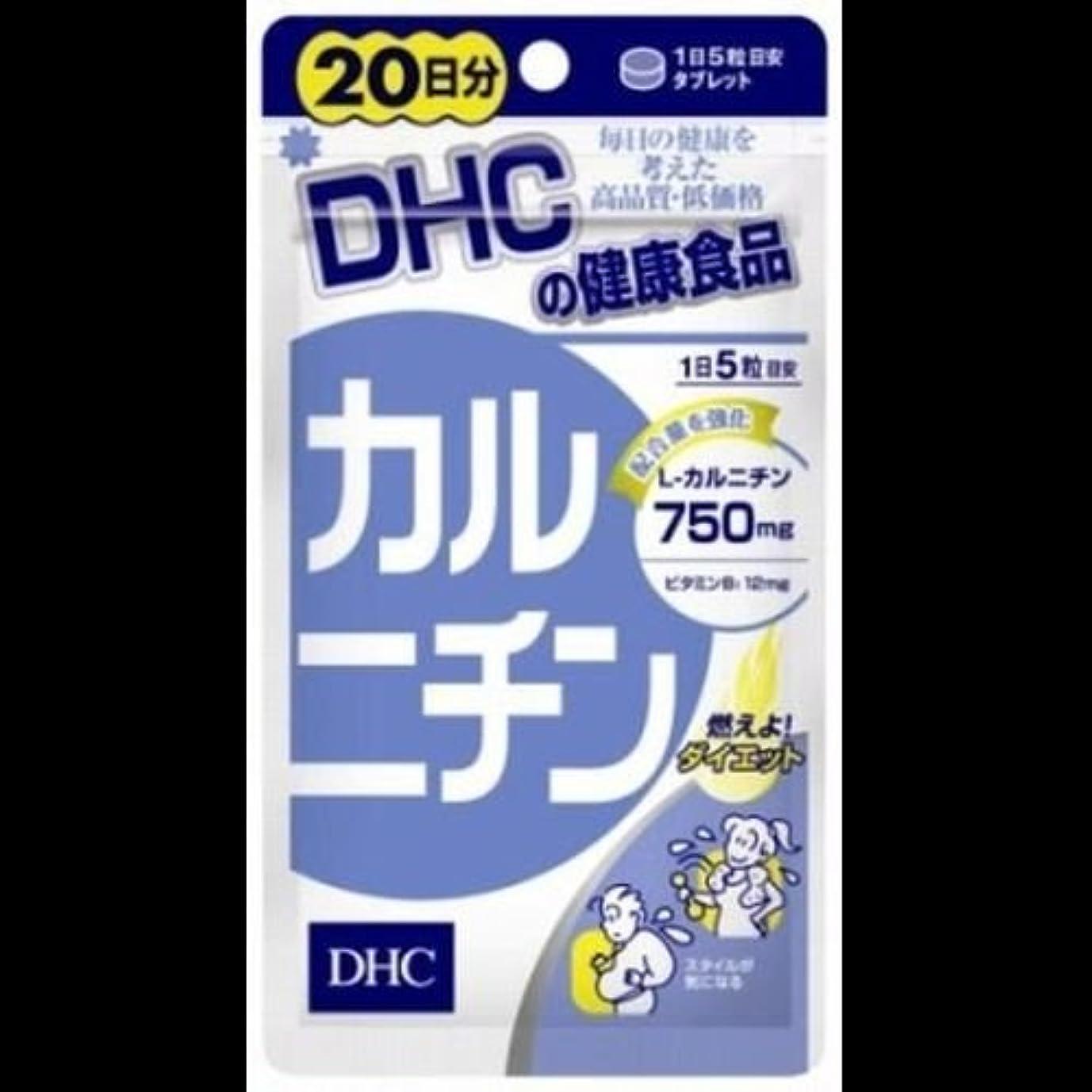 新年なしで抗生物質【まとめ買い】DHC DHCカルニチン20日 ×2セット