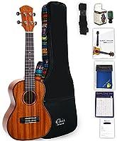 ELVIS エルビス ウクレレ コンサートサイズ マホガニー材 バインディング 高級エスニック風ケース付き (国内保証書・チューナー・教則本・コードチャート・ギグバッグなど8点セット)