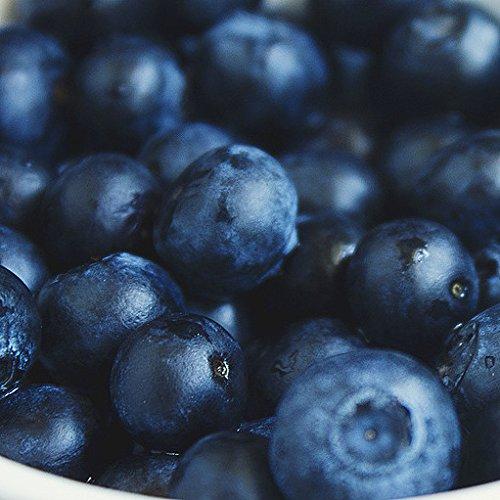 ミートガイ 冷凍ブルーベリー 業務用 (1kg) 100%無添加 Additive-free Frozen Blueberries