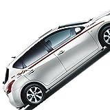 ニスモビニールステッカーサイドスカートデカール全身グラフィックデカール日産ニスモGTR 370Zジュークアルティマとその他のモデル [並行輸入品] - 3,371 円