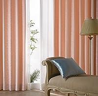 アスワン 光沢糸で立体的に表現したカーテン カーテン2.5倍ヒダ E6169 幅:250cm ×丈:140cm (2枚組)オーダーカーテン