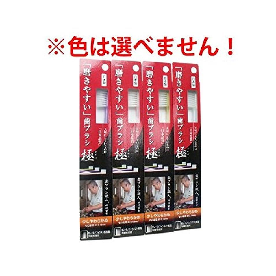 不利段階細部ライフレンジ 磨きやすい歯ブラシ極 1P*12本入り LT-25(少しやわらかめ)