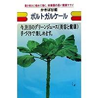 ケール 種 ポルトガルケール 小袋(約10ml)