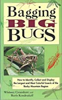 Bagging Big Bugs: How to Identify, Collect and Display the Largest and Most Colorful Insects of the Rocky Mountain Region