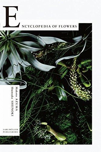 Encyclopedia of Flowers: Flower Works by Makoto Azuma photographed by Shunsuke Shiinoki