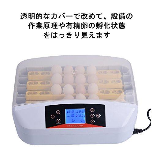 全自動孵卵器 (Fortem) 鳥類専用孵卵器 インキュベーター ふ卵器 孵卵機 ふ卵機 孵化器 ふ化器 孵化装置 孵化機 うずら 鳥類 液晶自動 鳥のLED孵卵器 実験用 32個