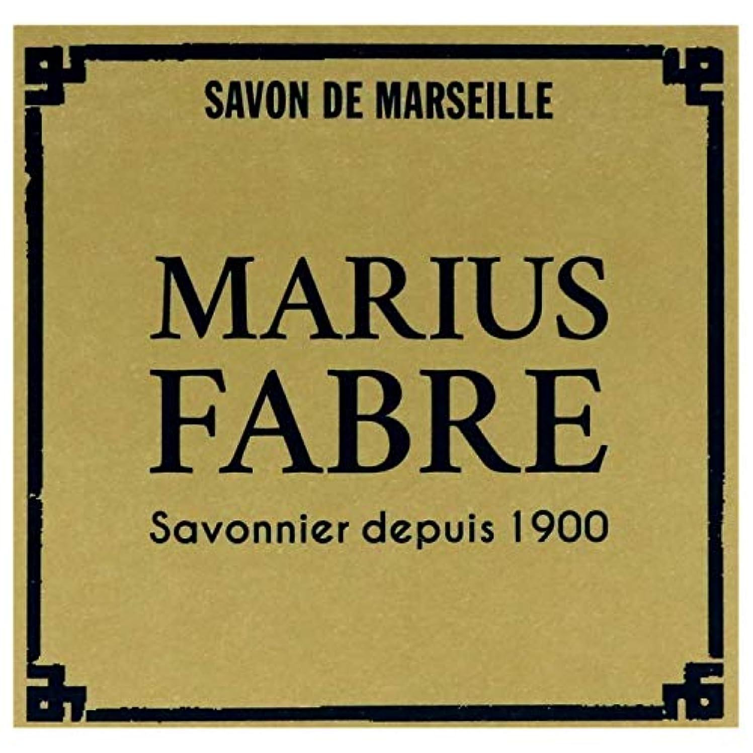 ピンポイント規制もっとサボンドマルセイユ ネイチャー パーム (400g)