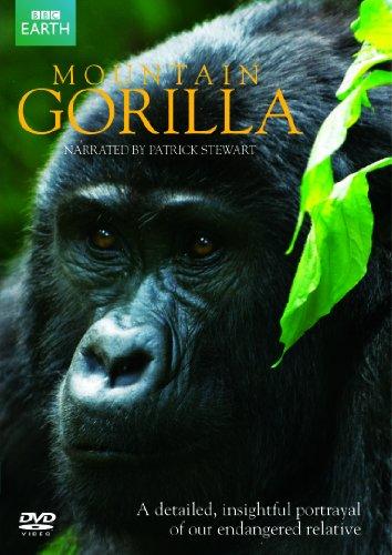Mountain Gorilla [Import anglais]