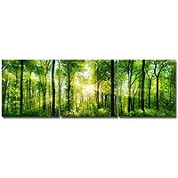 Royllent アートパネル インテリアアート「森」キャンバス絵画 3パネルセット(額付きの完成品) (40*40*3PCS)