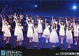 【山本彩】 公式生写真 AKB48 グループリクエストアワー 2016 DVD予約特典 365日の紙飛行機