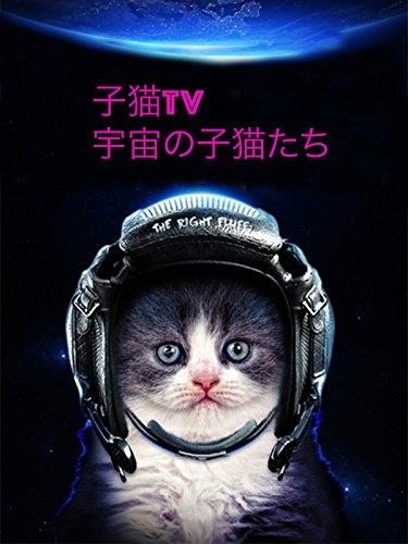 子猫TV 宇宙の子猫たち