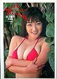 Soft Bomb―池上麗子写真集