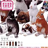 カプセル ネイチャーテクニカラーMONO ウサギ マグネット×ストラップ マグネットのみ8種セット