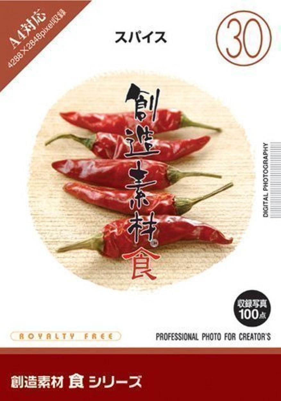 創造素材 食(30) スパイス