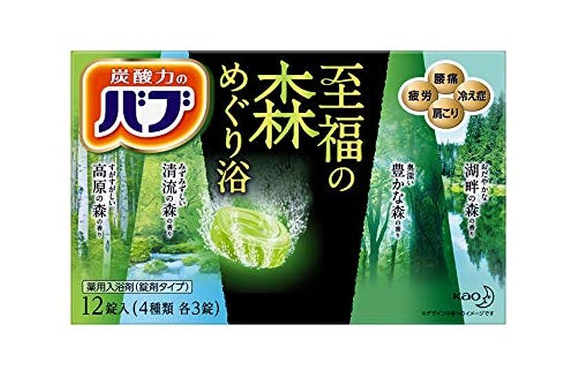 教育学柱洗剤バブ 至福の森めぐり浴 12錠入 (4種類各3錠入)