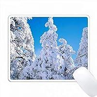 アメリカ、カリフォルニア州、クリーブランド、NF。ラグナ山脈の木々に雪。 PC Mouse Pad パソコン マウスパッド