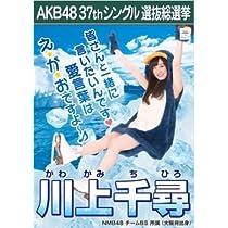 【川上千尋】ラブラドール・レトリバー AKB48 37thシングル選抜総選挙 劇場盤限定ポスター風生写真 NMB48チームB2