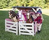 Our Generation Lily Anna Poseable Deluxe Doll Set with Riding Outfit, Award Ceremony Outfit, and