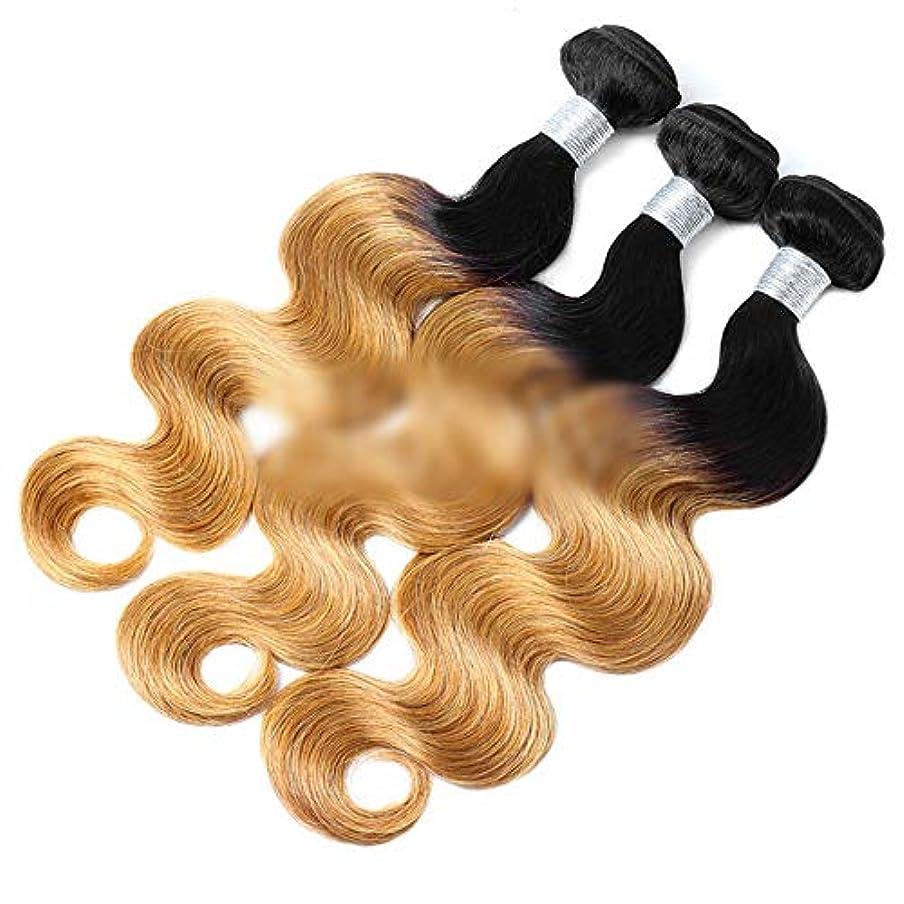 ぼかすギネスメタルラインWASAIO ブラジルオンブル人毛ウェーブストレートバンドルボディバンドル不機嫌ルーツをクリップグラデーションブロンドの拡張機能(12インチ?24インチ) (色 : Blonde, サイズ : 22 inch)