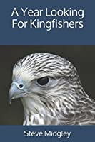 A Year Looking For Kingfishers