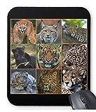 大型猫科動物たちのマウスパッド:フォトパッド*( 世界の野生動物シリーズ ) (B)