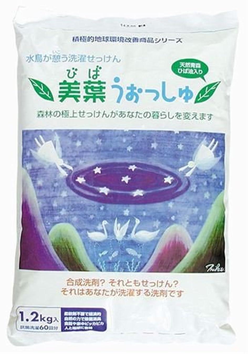 珍味安心硬い美葉うぉっしゅ(粉せっけん) 1.2kg
