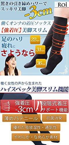(ロイ)Roi 『働く女の 着圧ソックス 』強着圧-3cm ソックス 段階式着圧サポート機能 靴下 (L~LL[23.5~25cm])