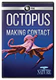 NATURE: Octopus: Making Contact [DVD]