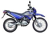 ヤマハ(Yamaha) XTZ125 ブルー SOX24ヶ月保証 乗り出し価格 [並行輸入品]
