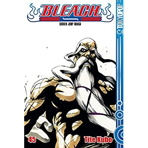 Bleach 45: Das flammende Inferno