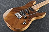 Ibanez / TQM1 Tom Quayle AZ Signature Model Natural アイバニーズ
