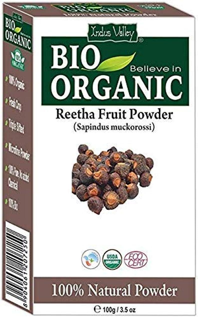 芝生類人猿バウンス認定レシピピュアオーガニックリーサフルーツ(ソープナッツ)パウダーフリーレシピ本100g