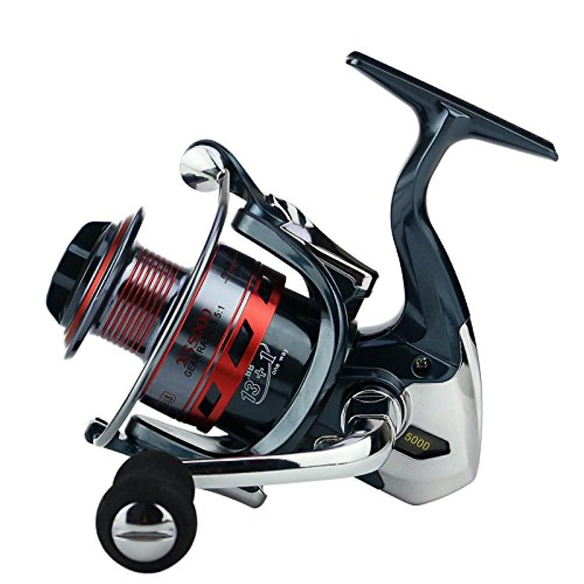 リットルピザシンジケートスピニングリール 塩水淡水釣り用ギア比5.5:1ダブルドラッグブレーキシステム付き釣りリール13 + 1ベアリング左右交換可能ハンドル (サイズ : 5000)
