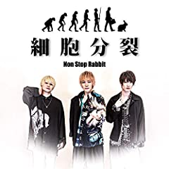 Non Stop Rabbit「Pant Voice」のジャケット画像