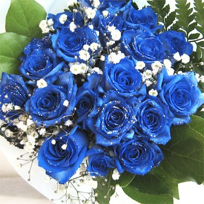 青いバラ 神秘的なブルーローズ プラチナの輝き 10本&カスミ...